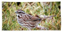Beach Sheet featuring the photograph Song Sparrow Sweetie by Kerri Farley