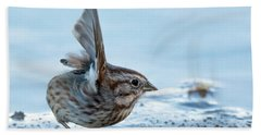 Song Sparrow 3426-112217-1cr Beach Towel
