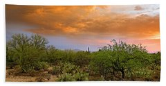 Beach Towel featuring the photograph Sonoran Desert H11 by Mark Myhaver