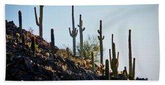 Sonoran Desert Saguaro Slope Beach Towel
