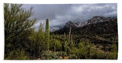 Beach Towel featuring the photograph Sonoran Winter No.1 by Mark Myhaver