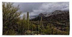 Beach Towel featuring the photograph Sonoran Winter No.3 by Mark Myhaver