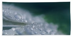 Beach Towel featuring the photograph Soul Blossoms  by Sharon Mau