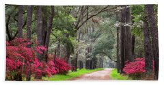 South Carolina Lowcountry Spring Flowers Dirt Road Edisto Island Sc Beach Towel