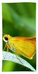 Southern Skipperling Butterfly 001  Beach Sheet