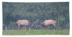Sparking Elk On A Foggy Morning - 1957 Beach Sheet