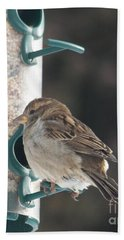 Sparrow And Seed Beach Towel
