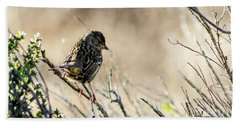 Snarky Sparrow Beach Sheet