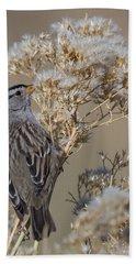 Sparrow Beach Towel