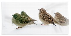 Sparrows In The Snow Beach Towel