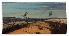 Sparse Trees At Bryce Canyon Beach Towel