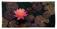 Speckled Red Lily And Pads Beach Towel