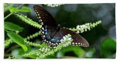 Spicebush Swallowtail Butterfly Beach Towel by Carol Bradley
