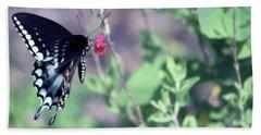 Spicebush Swallowtail Butterfly Beach Towel by D Renee Wilson