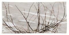 Spider Driftwood Beach Sheet