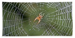Spider In A Dew Covered Web Beach Sheet