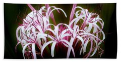 Spider Lilly Beach Towel