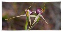 Spider Orchid Australia Beach Towel