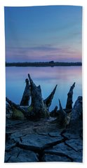 Beach Towel featuring the photograph Spikes In Blue by Davor Zerjav