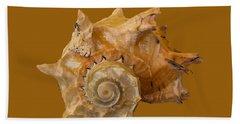 Spiral Shell Transparency Beach Towel