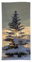 Beach Towel featuring the photograph Spirit Tree by Brad Allen Fine Art