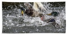 Splashing Mallards  Beach Towel