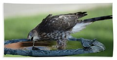 Water And The Hawk Beach Towel