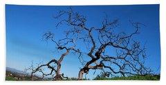 Split Single Tree On Hillside Beach Sheet