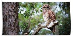 Spotted Owl II Beach Towel