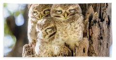Spotted Owlets Beach Towel