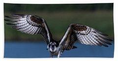 Spread Your Wings Beach Sheet