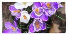 Beach Towel featuring the photograph Spring Beauties by Terri Harper