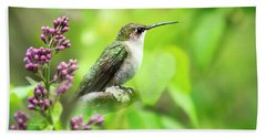 Spring Beauty Ruby Throat Hummingbird Beach Towel by Christina Rollo