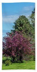 Beach Towel featuring the photograph Spring Blossoms by Paul Freidlund
