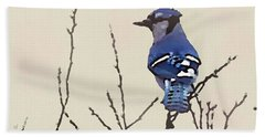 Spring Bluejay Beach Sheet