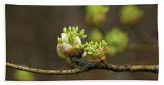 Spring Buds 9365 H_2 Beach Towel