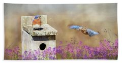 Beach Towel featuring the photograph Spring Builders by Lori Deiter