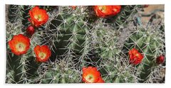 Spring Cactus Beach Sheet by Kathy Bassett