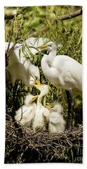 Beach Towel featuring the photograph Spring Egret Chicks by Robert Frederick