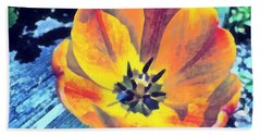 Beach Towel featuring the photograph Spring Flower Bloom by Derek Gedney