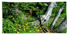 Spring In The High Country Beach Towel