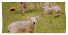 Spring Lamb Beach Towel