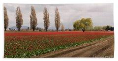 Spring Red Tulip Field Landscape Art Prints Beach Towel