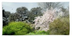 Beach Towel featuring the photograph Spring Treasures by Diana Angstadt
