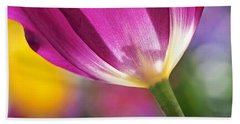 Beach Towel featuring the photograph Spring Tulip by Rona Black