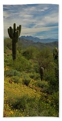 Spring View Of Four Peaks Beach Sheet by Sue Cullumber