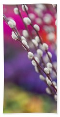 Spring Willow Branch Of White Furry Catkins Beach Towel