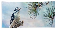 Spring Woodpecker Beach Towel