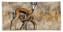 Springbok Mom And Calf Beach Towel