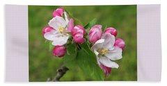 Springtime Apple Blossom Beach Sheet by Gill Billington